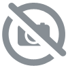 CLEANER TX en 5L